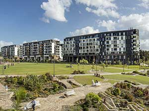 Harold Park Wins at Greater Sydney Planning Awards