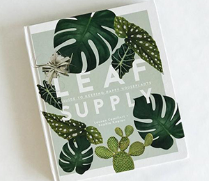 Win a Guide to Happy House Plants